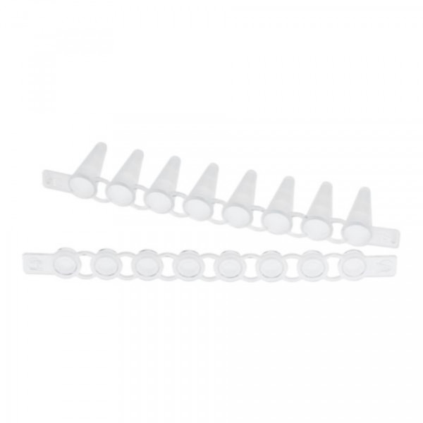 Eppendorf PCR Tube Strips 0,1 mL and Cap Strips, flat, 120 pcs. each