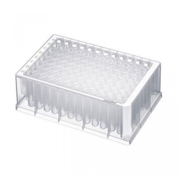 Eppendorf Deepwell plate 96/1000µl, Large package, Sterile, White, 80 plates (10 bags of 8)