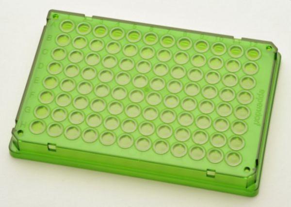 Eppendorf twin.tec® PCR Plate 96, skirted, 150 µL, PCR clean, grün, 300 Platten