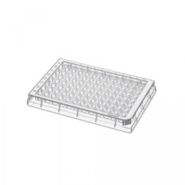 Eppendorf Microplate 96/V-PP, clear wells, border color white, sterile, 80 plates (5x 16 pcs.)