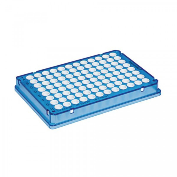 Eppendorf twin.tec96 real-time PCR Plates, skirted, 150 µL, PCR clean, blau, Wells weiß, 2