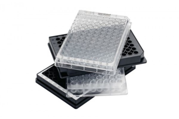 Eppendorf Microplate UV-VIS, 96/F, clear wells, PCR clean, 40 plates (4 bags of 10)